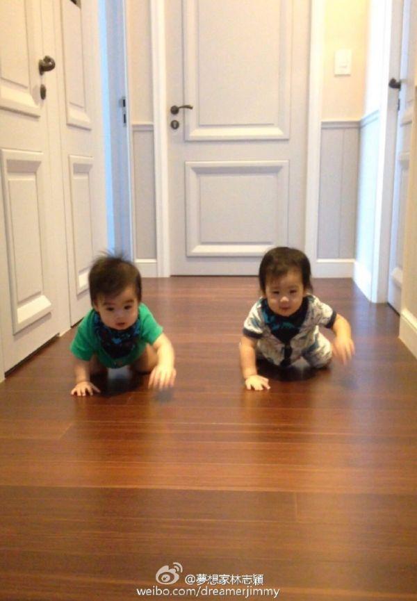 林志颖晒双胞胎儿子近照 网友被萌化